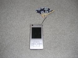Po20080509_0002